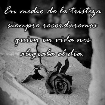 Imágenes de flores negras de luto