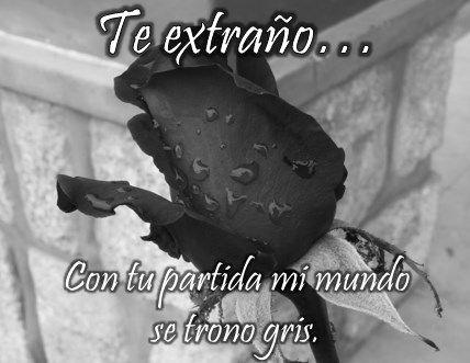 Bonitas Fotos De Rosas Negras Con Frases De Luto Y Condolencia