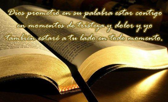 Las Mejores Tarjetas De Pésame Cristianas Con Frases Imágenes De Luto