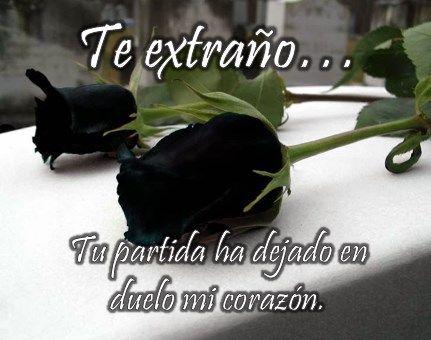 imágenes de rosas negras para perfil de facebook