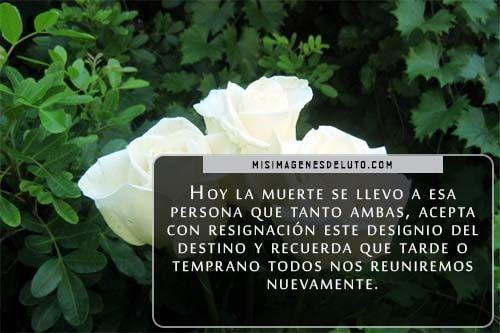 imágenes de flores blancas de luto