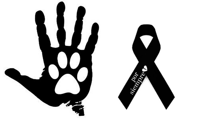 imágenes de luto para mascotas