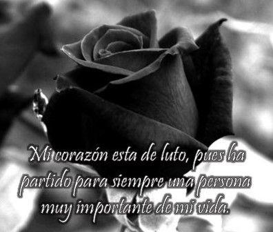 imagenes de rosas negras para whatsapp