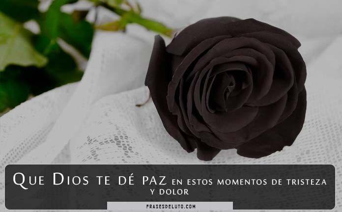 imágenes de rosas negras para perfil de WhatsApp