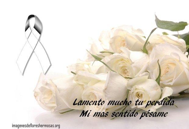 Imágenes De Rosas Blancas Para Brindar El Pésame