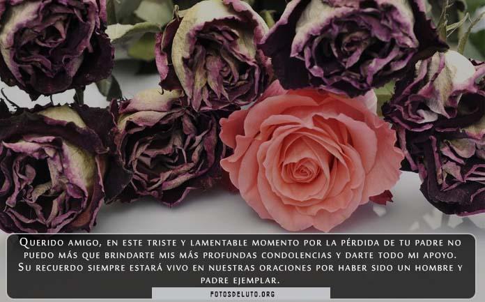 Imágenes de rosas con frases de luto