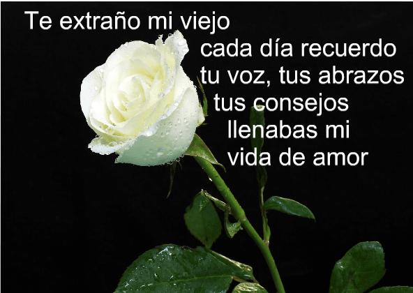 Como Te Extrano Mi Amor By Leo