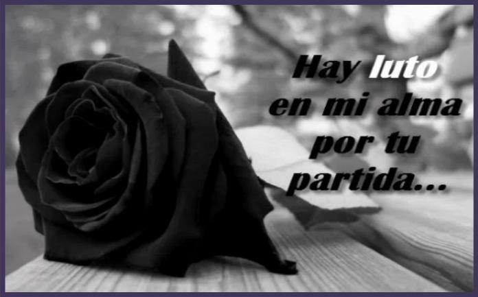 Imágenes de rosas negras con palabras de tristeza y dolor