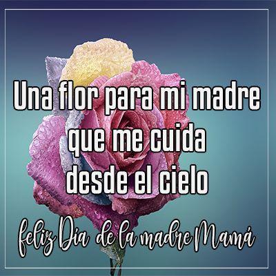 una flor para mi madre que me cuida desde el cielo