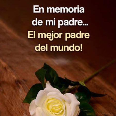 en memoria de mi padre el mejor del mundo