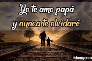 yo te amo papá y nunca te olvidaré