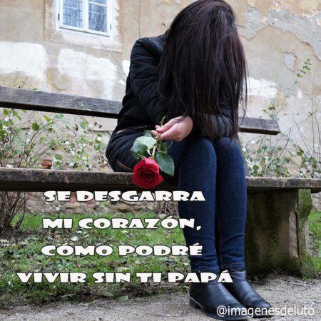 e desgarra mi corazon como podre vivir sin ti papá