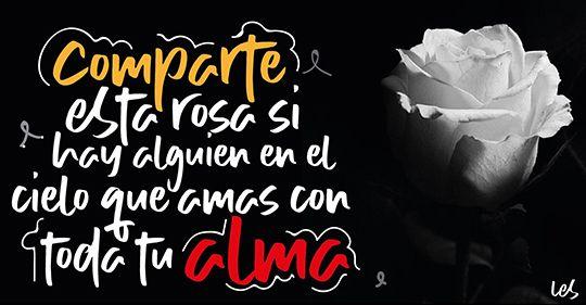 comparte esta rosa si hay alguien en el cielo a quien amas con toda tu alma