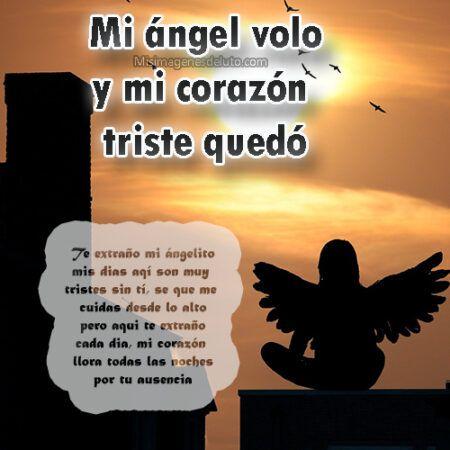 mi angel se fue al cielo